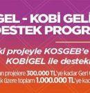 KOBİGEL – KOBİ Gelişim Destek Programı